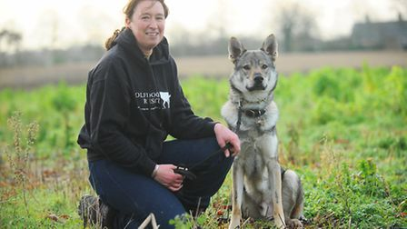 Sam Bryce with her Czechoslovakian Wolfdog Loki. They help search for lost dogs after Loki has been
