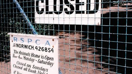 The RSPCA home in Drayton Road in 1995.