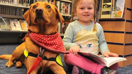 Summer Parker meets Pets as Therapy dog Delia at Norwich's Millennium Library trial event.Picture by