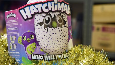 One of the top toys this Christmas, Hatchimals, which Langleys Toys have sold out of, and are unlike
