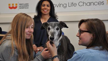 Pets As Therapy volunteer Nina Nannar with Biscuit the dog on a visit to Wayland Academy in Watton b