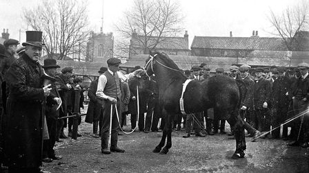 A horse fair in Bell Avenue. Photo from Archant Library.