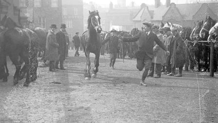 Another scene from Bell Avenue horse fair. Photo from Archant Library.