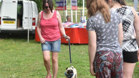 Hethersett Jubilee Youth Club fete and dog show. Picture: Sonya Duncan
