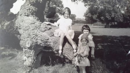 Playing in Wayland Woods during the 1930s. That's Margaret on the left with cousins Ann and Marion G