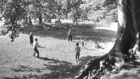 A family playing cricket at Earlham Park, 14th August 1959. Picture: Archant Library