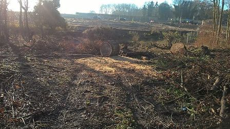 The site where the wildlife refuge used to be. Pic: Norfolk County Council.