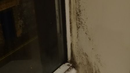 Mould growing around the windows at Mr Gladding's flat. Photo: Archant