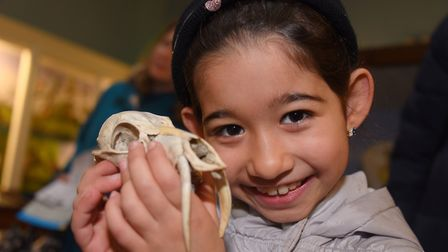 The caring for wildlife in winter weekend at Norwich Castle. Nehir Ertugrul, seven, with a Chinese w