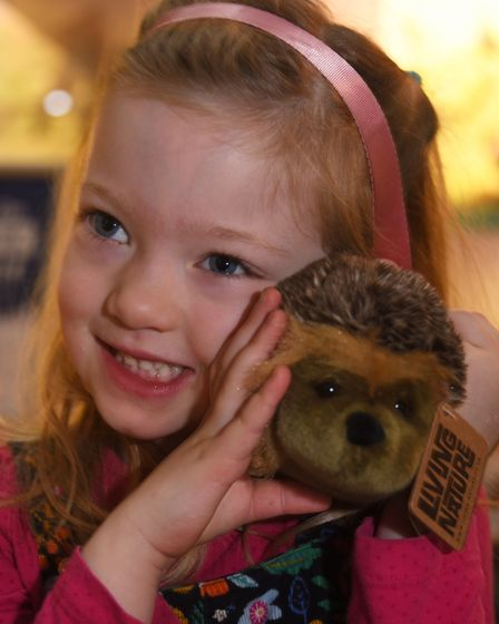 The caring for wildlife in winter weekend at Norwich Castle. Zena Outred, four, hugs a hedgehog on t