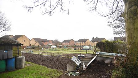 The allotments next to Watton Cemetery. Picture: Ian Burt