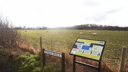 The cycle path at the top of Griston Road in Watton. In the distance the hedgerow is where the old W