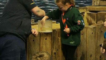 32 Beavers and Cubs (6-10 year olds) from North Yarmouth Scout Group and 1st Great Yarmouth Scout Gr