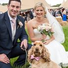 Barking Mad Dog Care are looking for dogs named Harry or Meg to be the faces of their royal wedding-