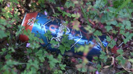 Cheaper brand cider cans can be evidence of drug users using an alleyway off Silver Street. Picture: