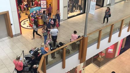 Queues for the Build-A-Bear shop in intu Chapelfield in Norwich on the shop's 'Pay Your Age Day'. Ph