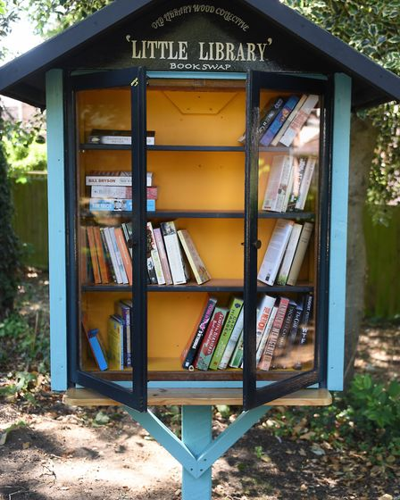 The new mini library book swap station at the Old Library Wood park area. Picture: DENISE BRADLEY