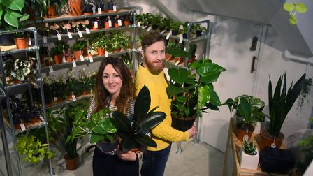 Roscoe Gibson-Denney and Michelle Clingan at the Plant Den, their houseplants and cacti stall at Jar