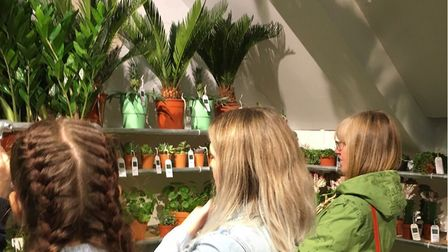 Customers eye up the beautiful pineapple plants sold in mint green pots at The Plant Den. Picture: M