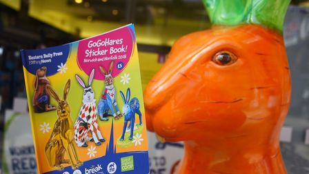 The GoGoHares sticker book. Picture: DENISE BRADLEY