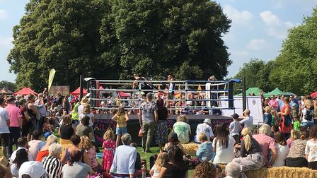 People enjoying the first day of Norwich Thai festival in Eaton Park. Picture: Chris Lakey