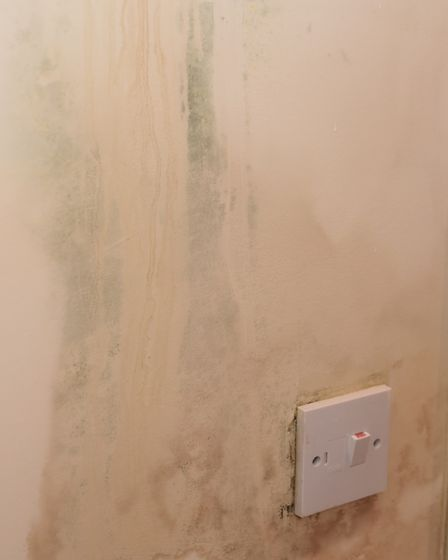 Mould in Abigail Nicholson and Daniel Moxon's flat in St Faith's Lane. Picture: DENISE BRADLEY