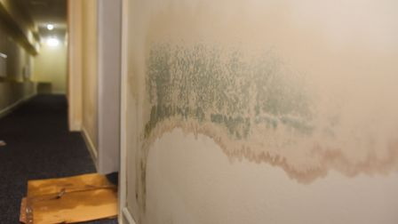 Mould in the corridor by the front door of Abigail Nicholson and Daniel Moxon's flat in St Faith's L
