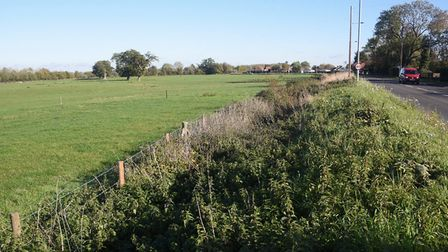 The land earmarked for a development of 327 homes between the Norwich Road and the A11, behind the t