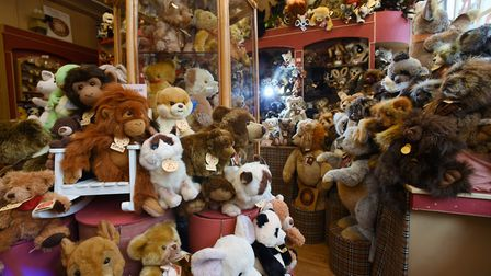 Bears of all colours, shapes and sizes at The Bear Shop at Elm Hill, the best known independent bear