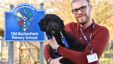 Hugo the Cockerpoo is the newest member of the class at Old Buckenham Primary School.Hugo is picture