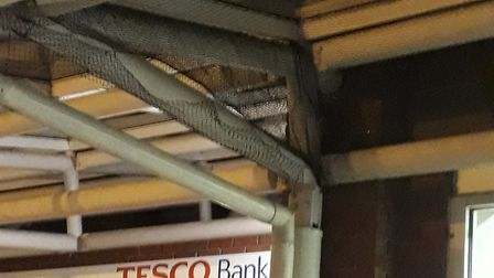 A Norwich supermarket has been criticised for installing netting to stop migrating birds from nestin