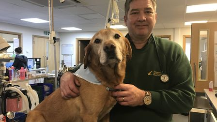 Roger Bannock, Director of Taverham Vets who are celebrating 25 years in business, with one of his f