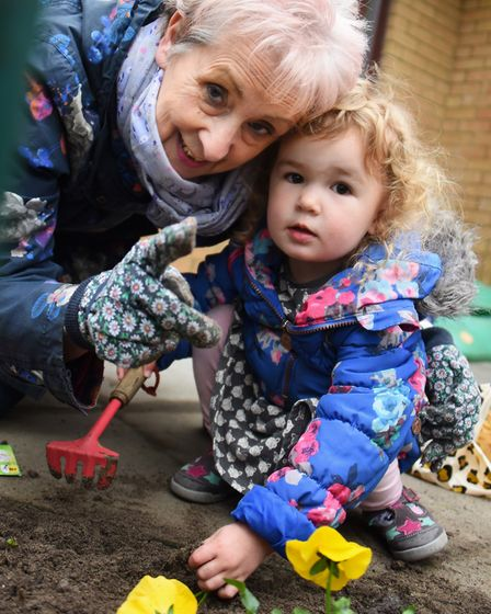 Nursery children at Busy Bees Norwich Meridian spruce up the gardens with the help of their grandpar