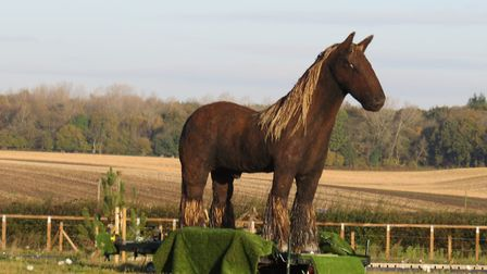 Damian O'Connor's War Horse sculpture which has been placed at a number of Norfolk roundabouts. Pict