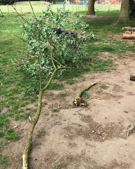 More damage was caused to the forest school at Swaffham Infants. Pictures: Cara Butters