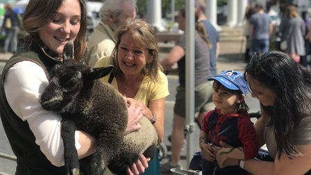 The Swaffham Sheep Fair 2019 proved popular with all ages. Picture: Neil Didsbury