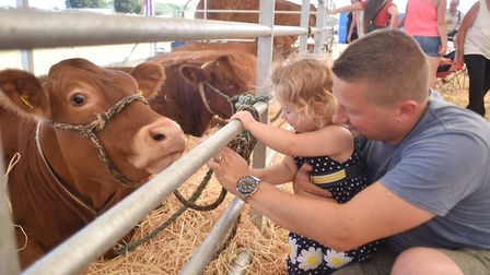 Wayland Agricultural Show, 2018. Alex Skipper and his daughter Evie, 2, looking at the cattle.Pictur