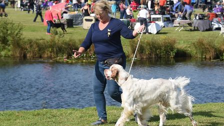 A quick training session for the ring at the Old Buckenham dog show celebrating its 50th anniversary