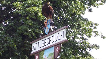 Arnie the Harris Hawk from NBC Pest solutions, on the Queens Square Sign in Attleborough.For Elaine