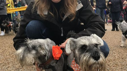 Stephanie Hudson and her two schnauzers were the hosts of Schnauzerfest 2019 in Eaton Park. Picture: