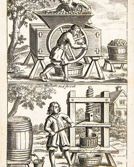 Cider making was an important part of Attleborough's economy for almost 100 years. Picture: DR ANDRE