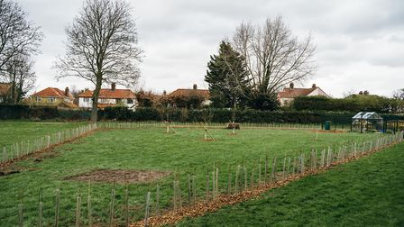 Pupils, parents and local residents helped with rewilding project at Hewett Academy in Norwich. Pict