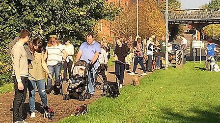 A previous dog walking event arranged by Norwich Best For Pets Picture: Michele Neave