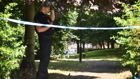 Police searching the park after the shooting.Picture: ANTONY KELLY