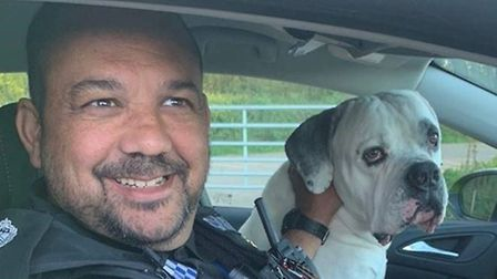 Police found 'Brian' on the NDR near Spixworth and want to reunite him with his owner. Picture: Broa