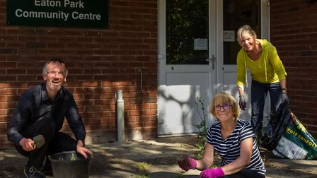 Liberal Democrat councillors Brian Watkins, Caroline Ackroyd and Judith Lubbock clear weeds from the