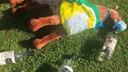 Derek the pony had a little too much to drink on one of his adventures. Picture: Submitted