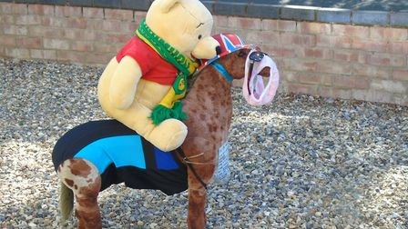 Derek the pony with Pooh Bear. Picture: Peter Steward