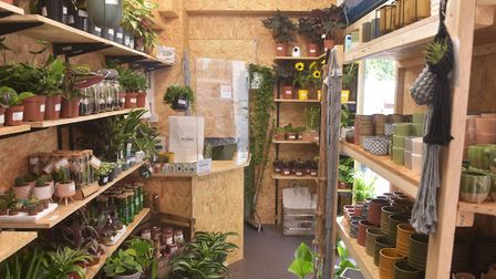 The Bo-Tanical Outlet sells discounted plants and exclusive products too Pictures: BRITTANY WOODMAN