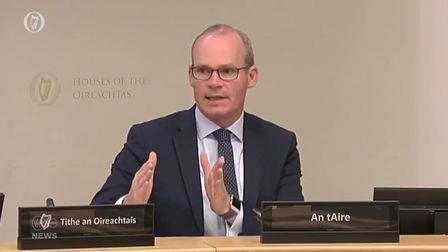 Simon Coveney at the European Union Affairs Committee